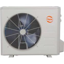 Payne 25.0 SEER Ductless System Heat Pump 38MAR
